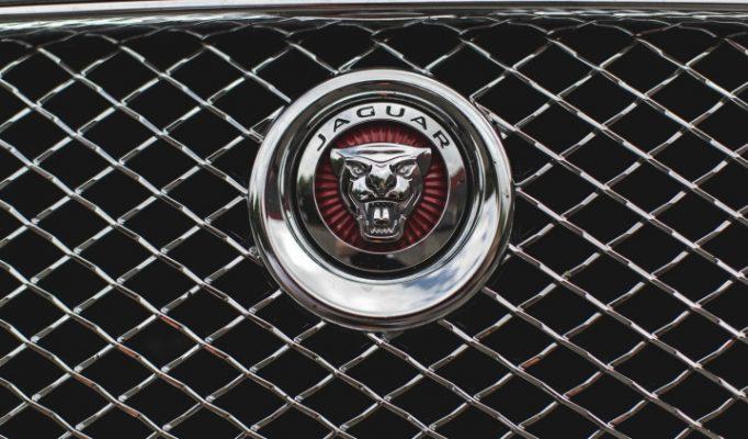 JaguarTheQueen-C-750×422