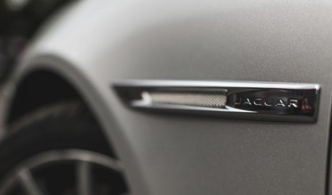 JaguarTheQueen-F-750×422