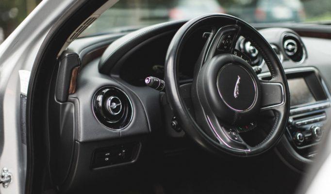 JaguarTheQueen-G-750×422